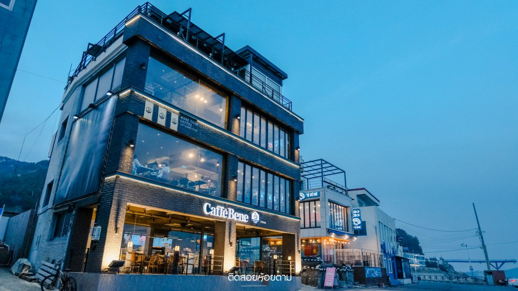 cafe in busan