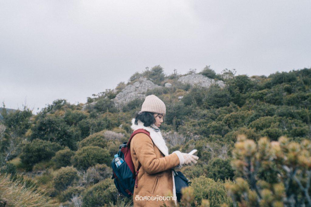 เที่ยว Tasmania
