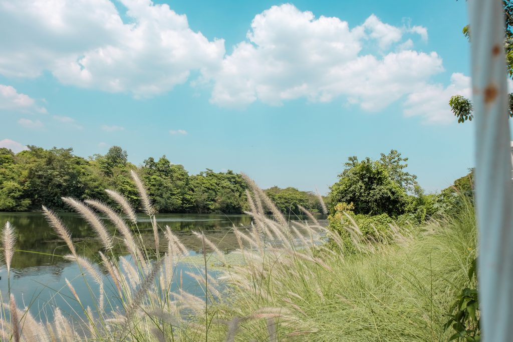 ริมแม่น้ำแคว